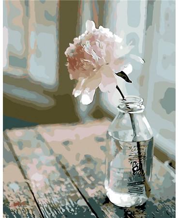 Un clavel en el corazón Flores y naturaleza