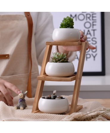 Juego de macetas minimalistas con estante de bambú Winterleg Jarrones y floreros
