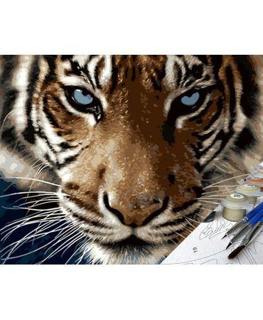 Tigre Perseus Animales