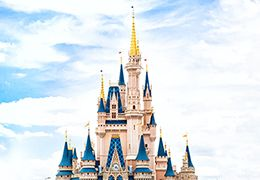 Disney World y la regla de la papelera a 30 pasos